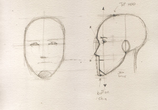 Face drawing the profile drawing factory