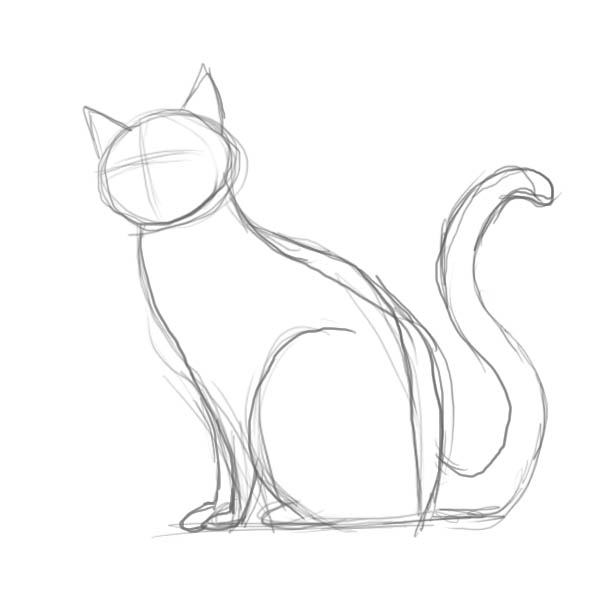 Time has come to sketch in the basic elements of the face please use a lot of reference material for this google cat and find out whats special about the