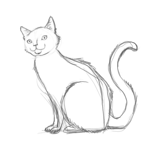 Cats Drawing How to Draw a Cat – Complete